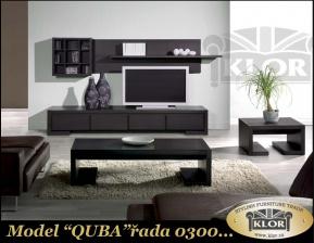 0300 Model QUBA
