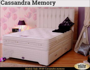 CASSANDRA MEMORY - 4960